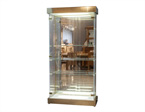 Lucite and Glass Curio Cabinet